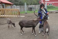2010 - Granja de rens de Palmer