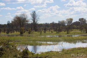 Llanos de inundación del Chobe